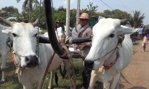 Recent Destinations - Cara - Mekong