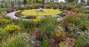 WA Wildflowers, Landscapes & Private Gardens